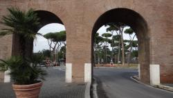 2014, Rome, Pini di Roma