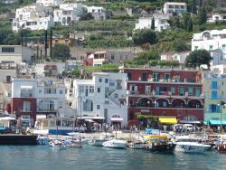2011 Capri, a view
