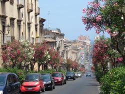 2011 Catania, a view