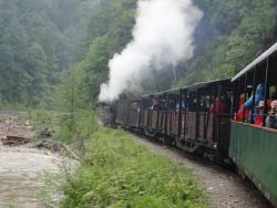 2015 Maramures, the steam train